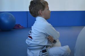 Kai jiu-jitsu