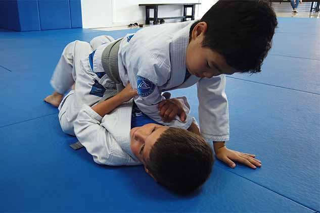 RODRIGO GRACIE JIU-JITSU – Martial Arts Self defense Brazilian